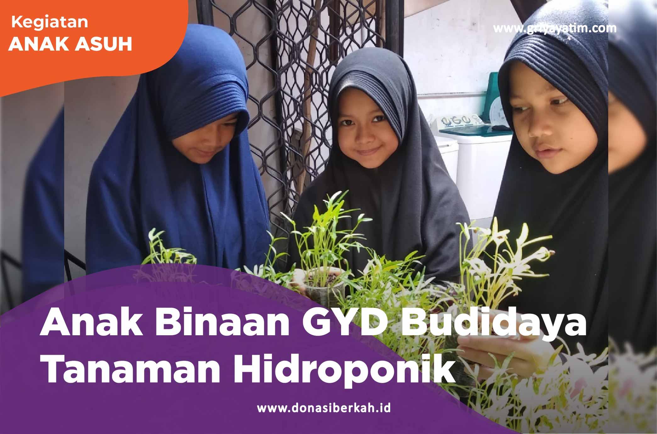 Anak Binaan GYD Budidaya Tanaman Hidroponik